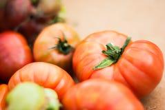 成熟的祖传遗物蕃茄在农夫` s市场上 免版税库存照片
