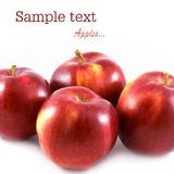 成熟的苹果四 库存图片