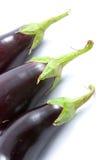 成熟的茄子 免版税库存照片