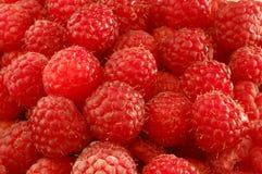 成熟的莓 图库摄影
