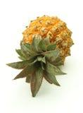 成熟的菠萝 图库摄影