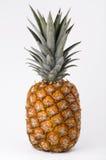 成熟的菠萝 库存图片