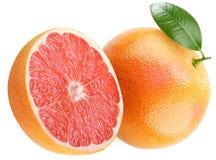 成熟的葡萄柚 免版税图库摄影