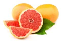 成熟的葡萄柚 库存照片