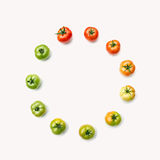 成熟的蕃茄阶段  库存图片