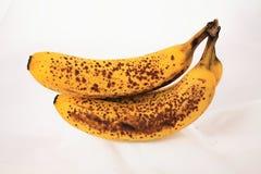 成熟的香蕉 图库摄影