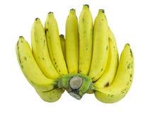 成熟的香蕉 库存照片