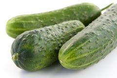 成熟的黄瓜 图库摄影
