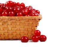 成熟篮子的樱桃 免版税库存图片