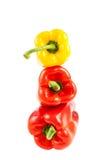 成熟红色和黄色胡椒 库存图片