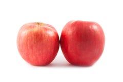 成熟红色苹果。 免版税库存图片