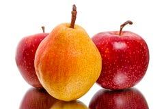 成熟红色苹果和梨 库存图片
