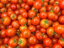 成熟红色蕃茄辣椒特写镜头 图库摄影