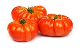 成熟红色蕃茄Timento 免版税库存图片