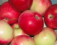 成熟红色水多的苹果 库存照片