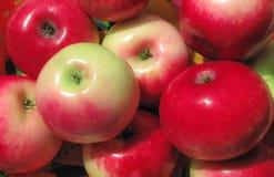 成熟红色水多的苹果 免版税库存照片
