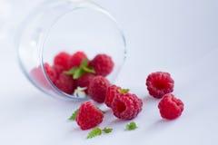 成熟红草莓 非常浅景深 免版税库存图片