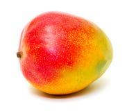 成熟芒果 库存图片