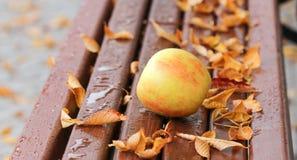 成熟苹果和秋叶在木长凳 库存图片