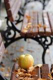 成熟苹果和秋叶在木长凳 库存照片