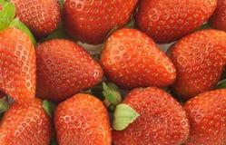 成熟草莓当背景特写镜头 库存照片