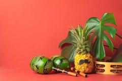 成熟菠萝有黑与植物的大绿色叶子的颊须maracas红色背景 从食物的滑稽的面孔 图库摄影