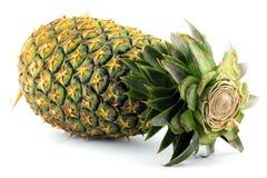成熟菠萝 库存照片