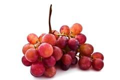 成熟葡萄分行  库存图片