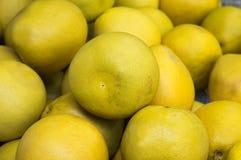 成熟葡萄柚,黄色,销售在菜市场上 靠山 顶视图 特写镜头 免版税库存照片