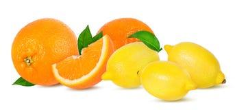 成熟被隔绝的桔子和柠檬 库存图片
