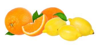 成熟被隔绝的桔子和柠檬 库存照片