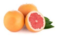 成熟裁减红色葡萄柚 图库摄影