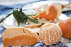 成熟西西里人的柑桔 库存图片