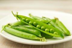 成熟豆和豌豆荚  图库摄影