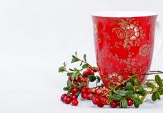 成熟越橘和红色杯子有装饰品的 免版税库存图片