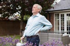 成熟遭受腰疼的人,在家从事园艺 免版税库存照片