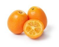 成熟金桔果子 库存照片