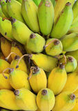 成熟香蕉的束 库存照片
