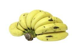 成熟香蕉 图库摄影