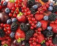 成熟黑莓、黑莓、草莓、红浆果、桃子和李子 混合莓果和果子 顶视图 背景berri 库存照片