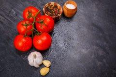 成熟,开胃明亮的蕃茄用干胡椒,大蒜和盐在黑背景,那里是室文本的 免版税库存照片