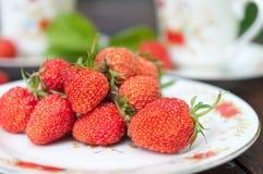 成熟,开胃草莓在白色板材驱散了 免版税库存照片