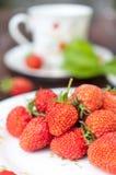 成熟,开胃草莓在白色板材驱散了 免版税图库摄影