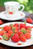 成熟,开胃草莓在白色板材驱散了 库存照片