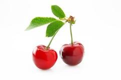 成熟,水多和开胃樱桃莓果 图库摄影