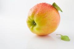 成熟,水多和鲜美苹果 库存照片