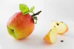 成熟,水多和鲜美苹果 免版税库存照片