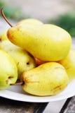 成熟,水多的梨 免版税库存图片