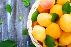 成熟水多的杏子 库存照片