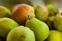 成熟水多的梨背景您的设计的 免版税库存照片